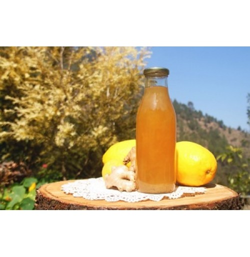 Cooler - Lemon Ginger (Juice Concentrate)